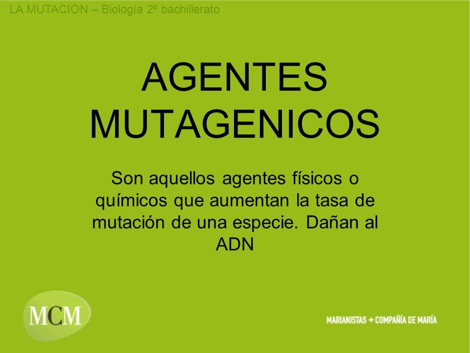 AGENTES MUTAGENICOS Son aquellos agentes físicos o químicos que aumentan la tasa de mutación de una especie.