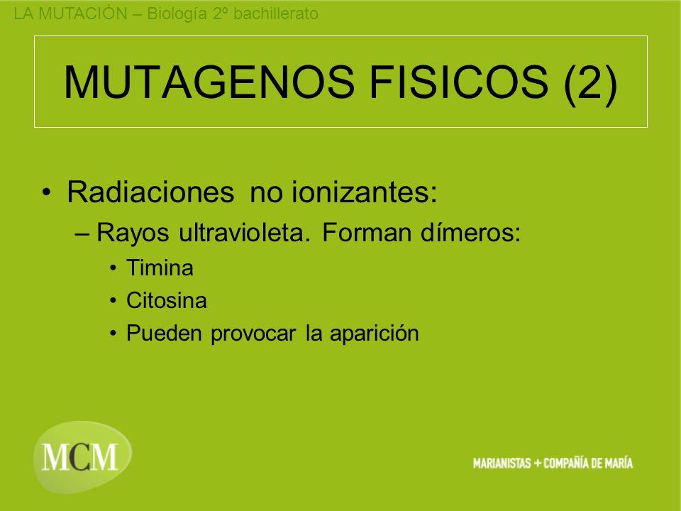 MUTAGENOS FISICOS (2) Radiaciones no ionizantes: