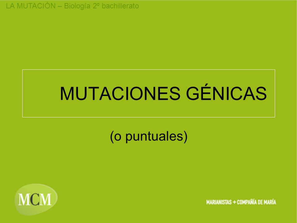 MUTACIONES GÉNICAS (o puntuales)