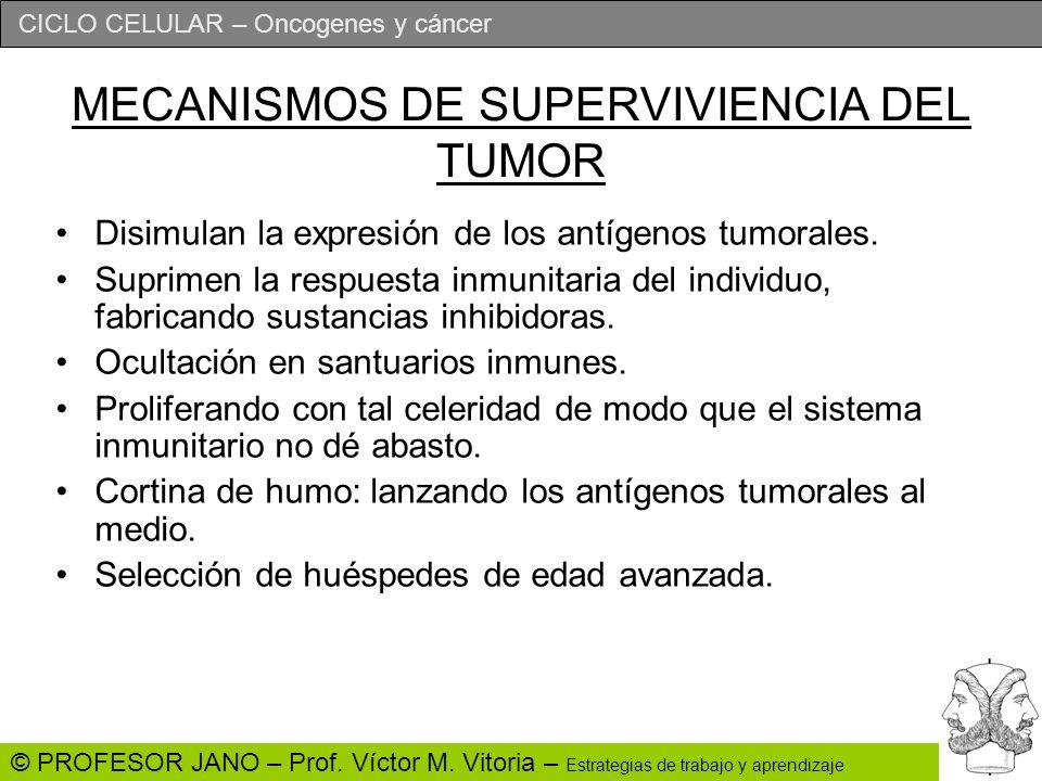 MECANISMOS DE SUPERVIVIENCIA DEL TUMOR