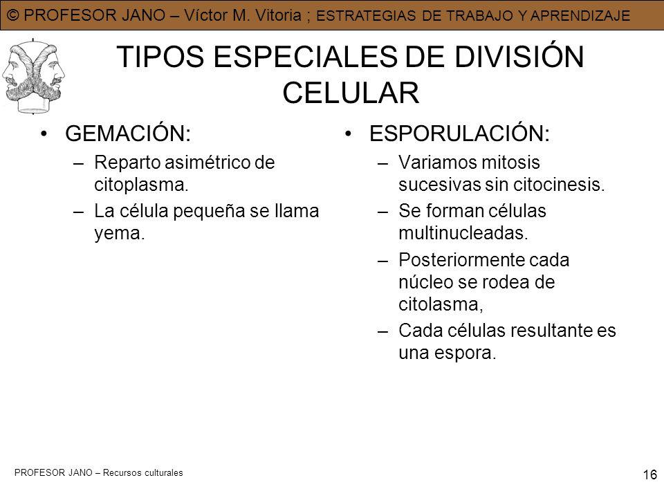 TIPOS ESPECIALES DE DIVISIÓN CELULAR