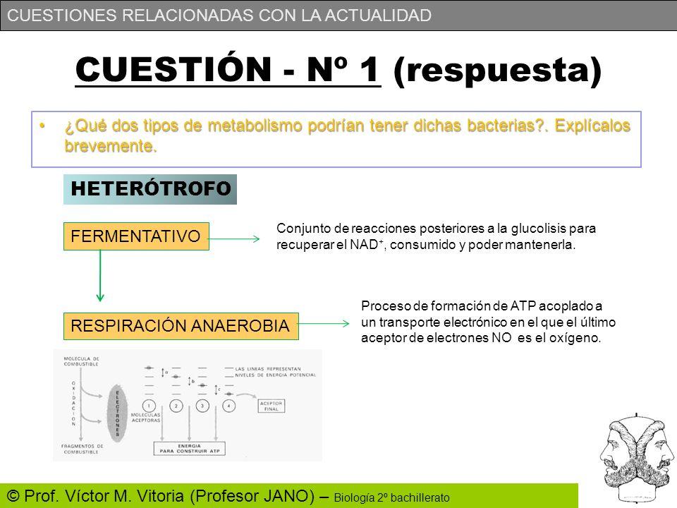 CUESTIÓN - Nº 1 (respuesta)