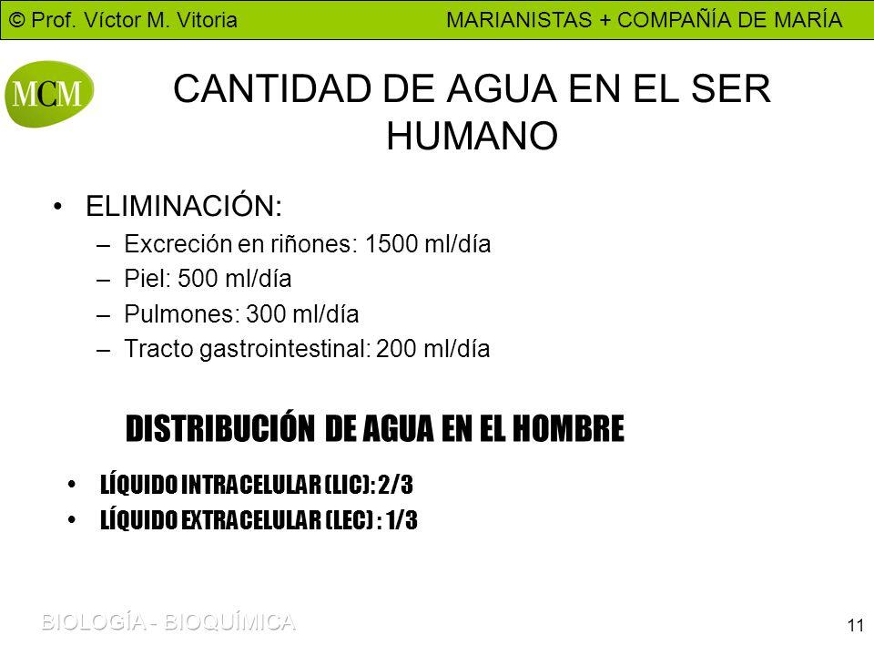 CANTIDAD DE AGUA EN EL SER HUMANO