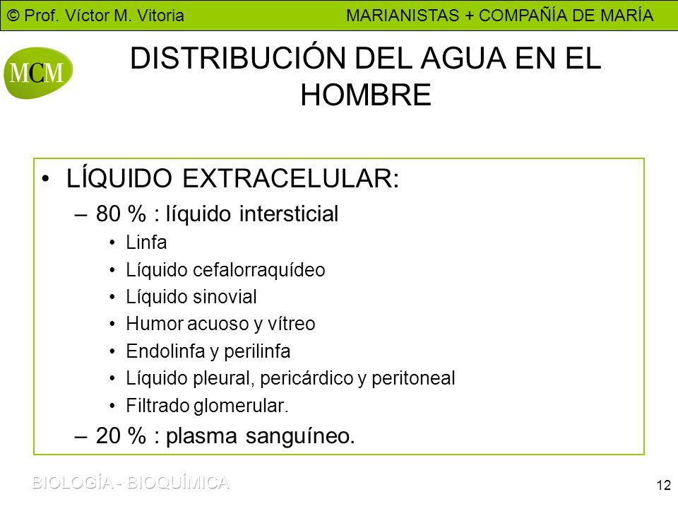 DISTRIBUCIÓN DEL AGUA EN EL HOMBRE