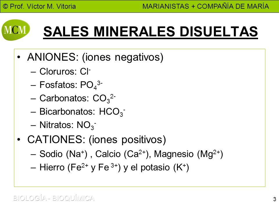SALES MINERALES DISUELTAS