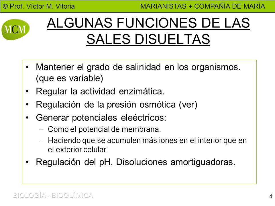 ALGUNAS FUNCIONES DE LAS SALES DISUELTAS