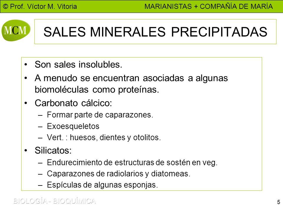 SALES MINERALES PRECIPITADAS