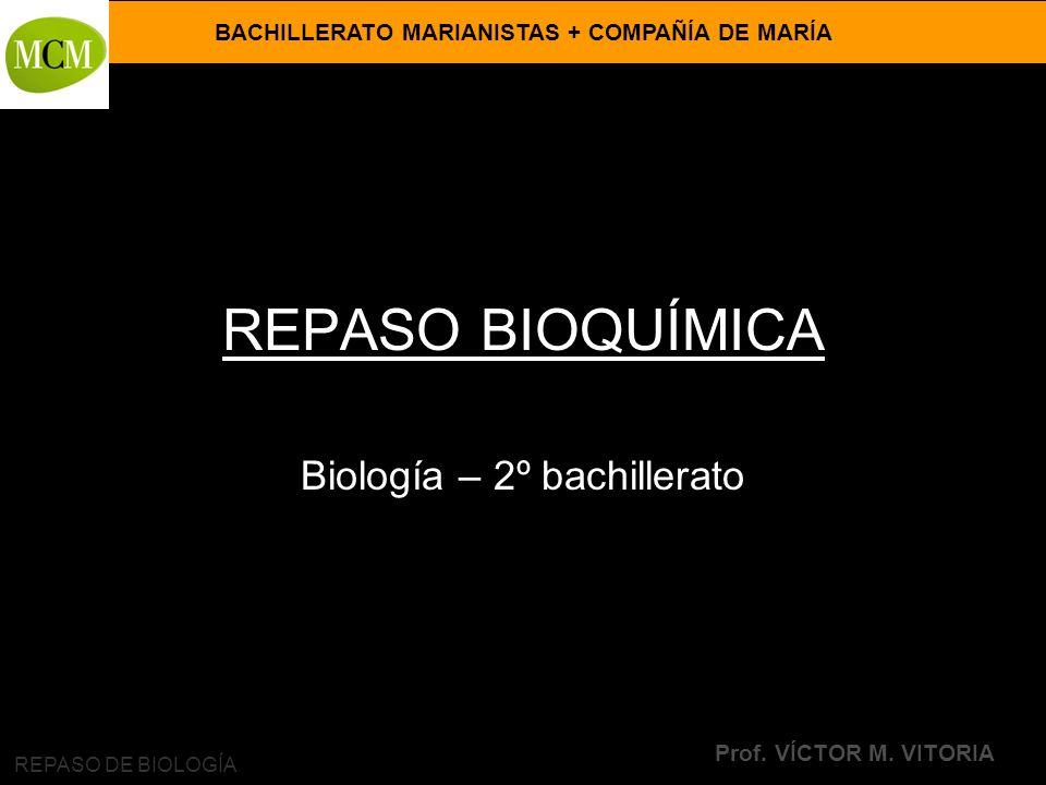 VÍCTOR M. VITORIA es PROFESOR JANO Biología – 2º bachillerato