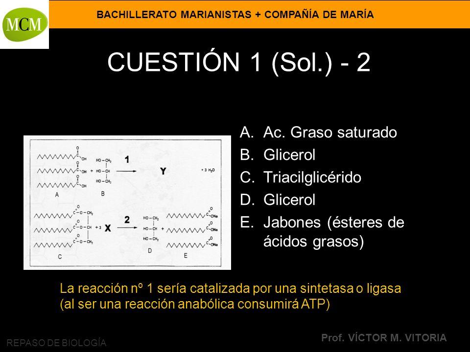CUESTIÓN 1 (Sol.) - 2 Ac. Graso saturado Glicerol Triacilglicérido
