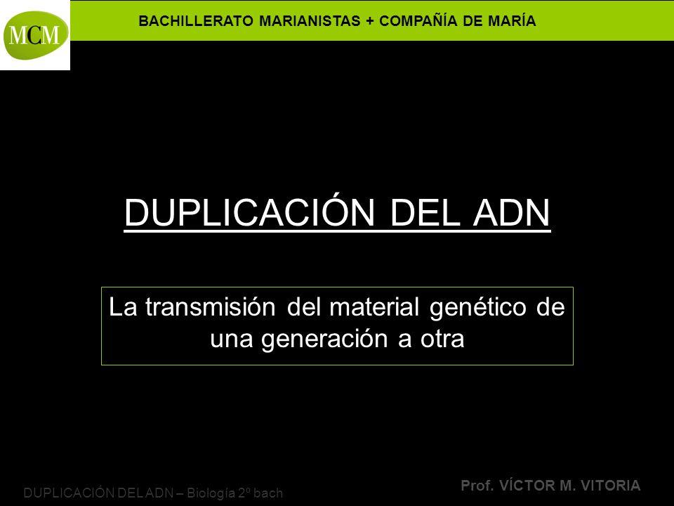 La transmisión del material genético de una generación a otra