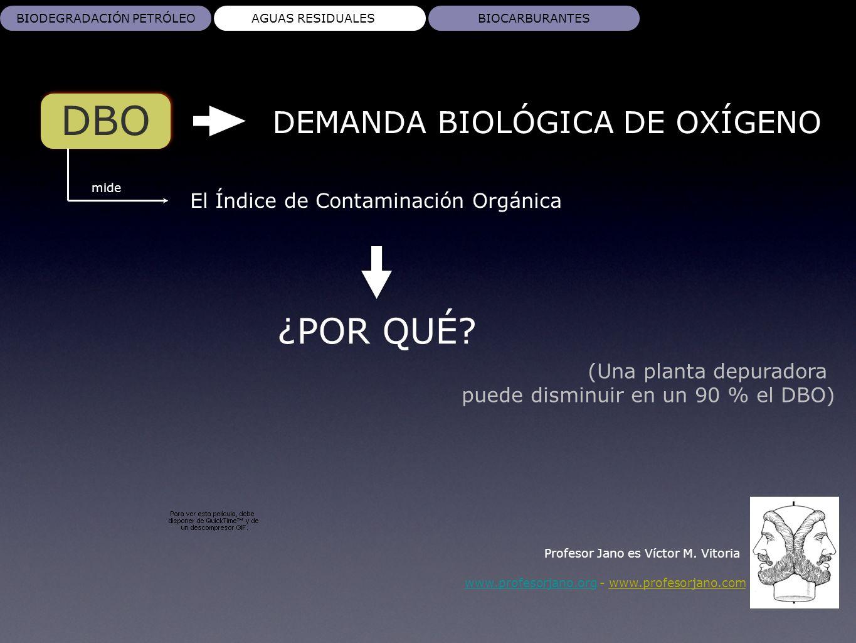 DBO ¿POR QUÉ DEMANDA BIOLÓGICA DE OXÍGENO