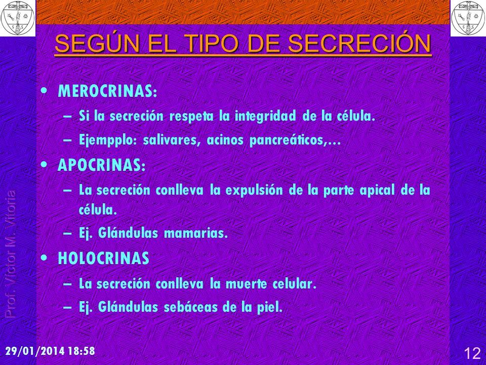 SEGÚN EL TIPO DE SECRECIÓN