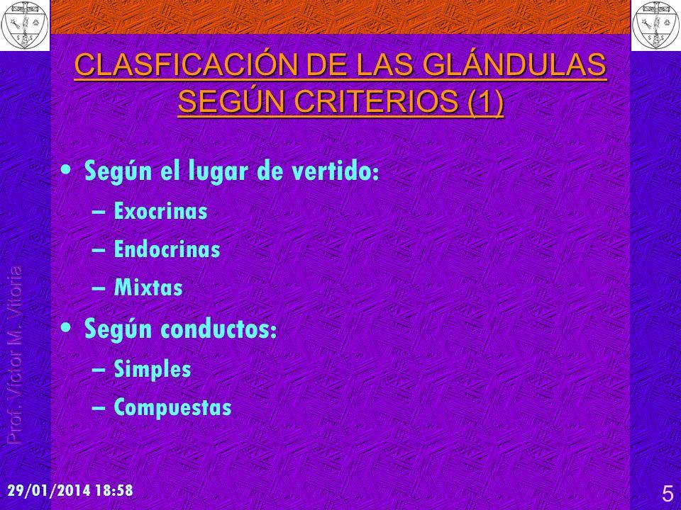 CLASFICACIÓN DE LAS GLÁNDULAS SEGÚN CRITERIOS (1)