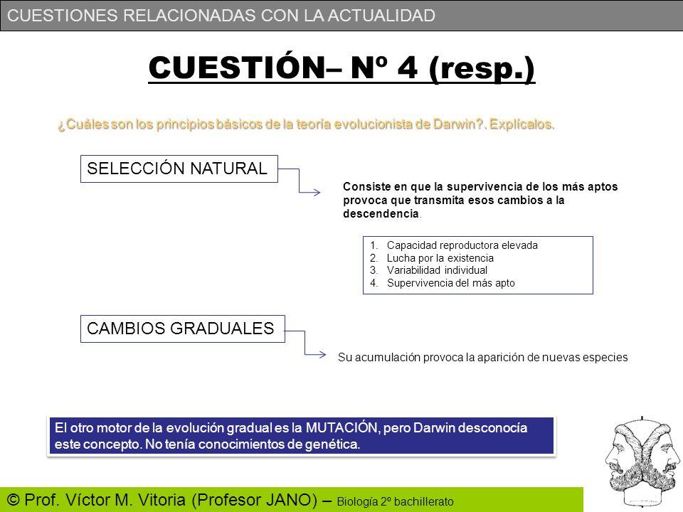 CUESTIÓN– Nº 4 (resp.) SELECCIÓN NATURAL CAMBIOS GRADUALES