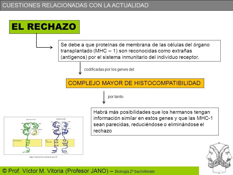 EL RECHAZO COMPLEJO MAYOR DE HISTOCOMPATIBILIDAD