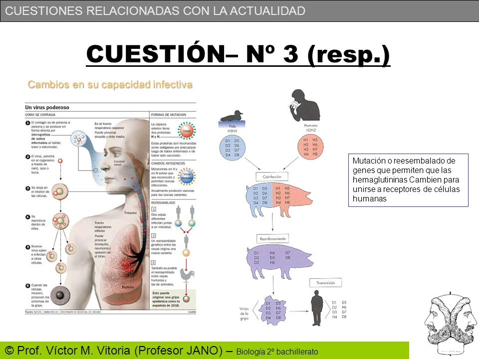 CUESTIÓN– Nº 3 (resp.) Cambios en su capacidad infectiva