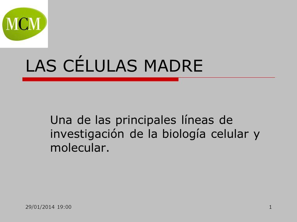 LAS CÉLULAS MADRE Una de las principales líneas de investigación de la biología celular y molecular.