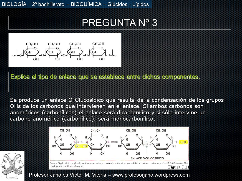 PREGUNTA Nº 3 Explica el tipo de enlace que se establece entre dichos componentes.