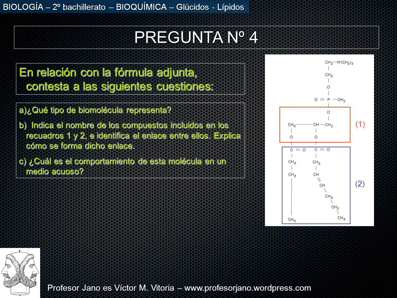 PREGUNTA Nº 4 En relación con la fórmula adjunta, contesta a las siguientes cuestiones: ¿Qué tipo de biomolécula representa