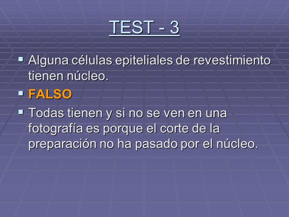 TEST - 3 Alguna células epiteliales de revestimiento tienen núcleo.