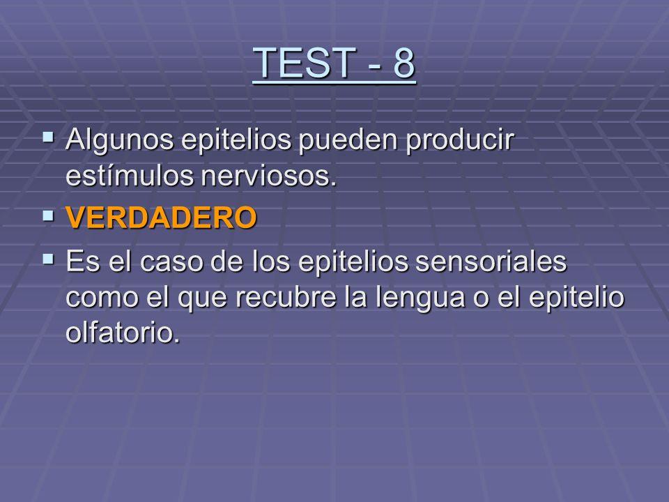 TEST - 8 Algunos epitelios pueden producir estímulos nerviosos.