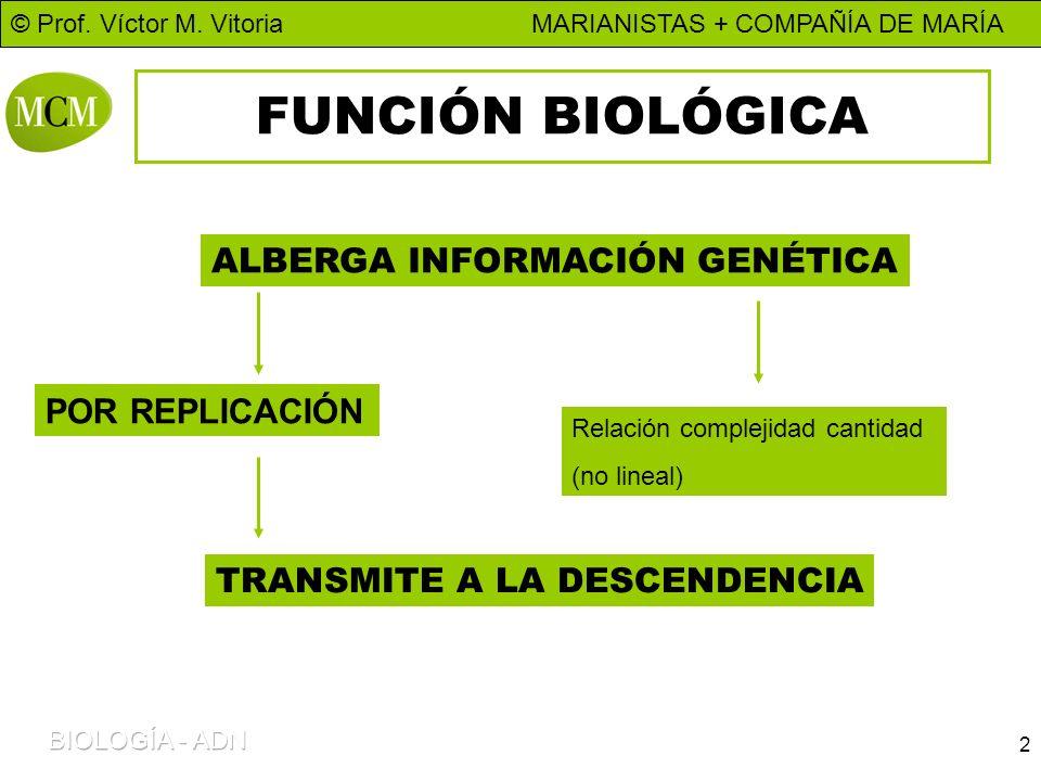 FUNCIÓN BIOLÓGICA ALBERGA INFORMACIÓN GENÉTICA POR REPLICACIÓN