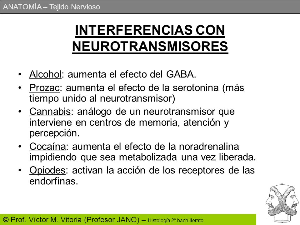 INTERFERENCIAS CON NEUROTRANSMISORES