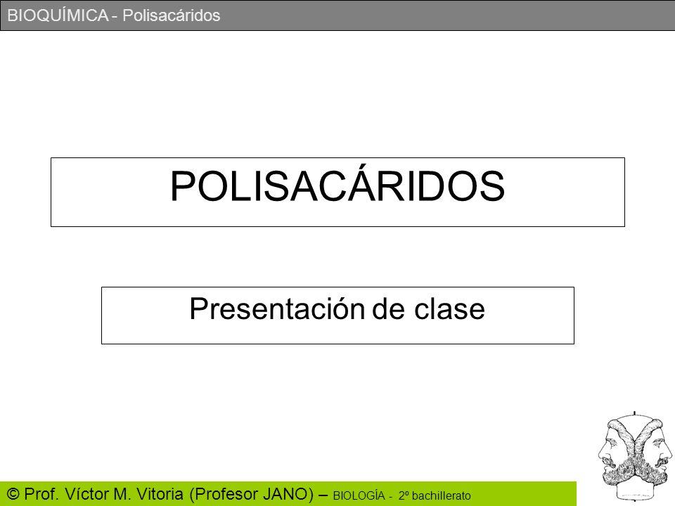 POLISACÁRIDOS Presentación de clase