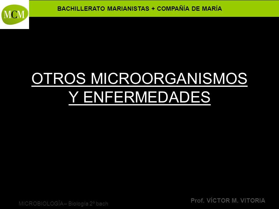 OTROS MICROORGANISMOS Y ENFERMEDADES