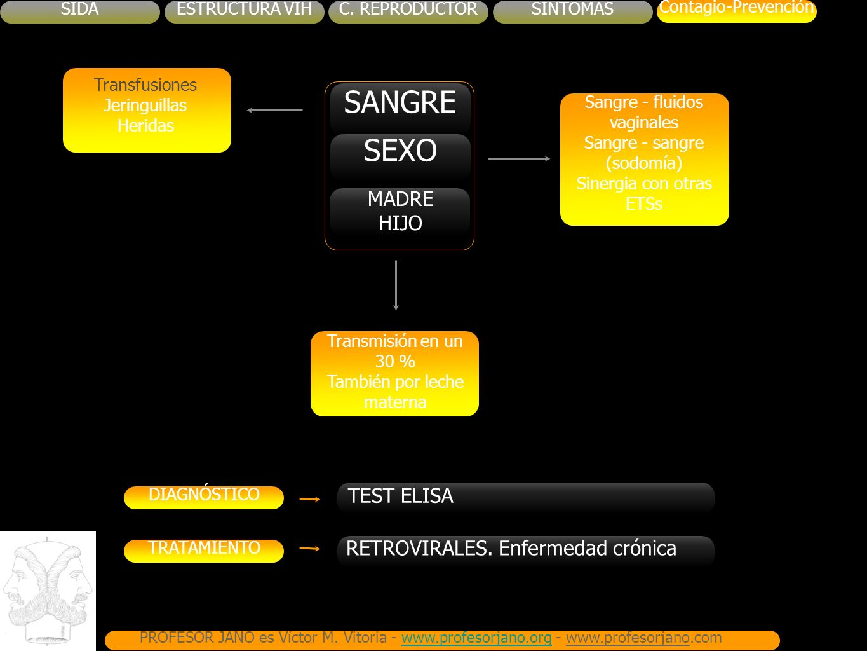 SANGRE SEXO MADRE HIJO TEST ELISA RETROVIRALES. Enfermedad crónica