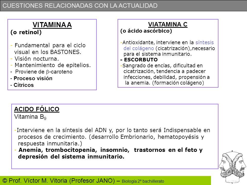 VITAMINA A VIATAMINA C ACIDO FÓLICO Vitamina B9 (o retinol)
