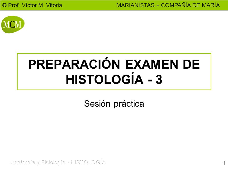 PREPARACIÓN EXAMEN DE HISTOLOGÍA - 3