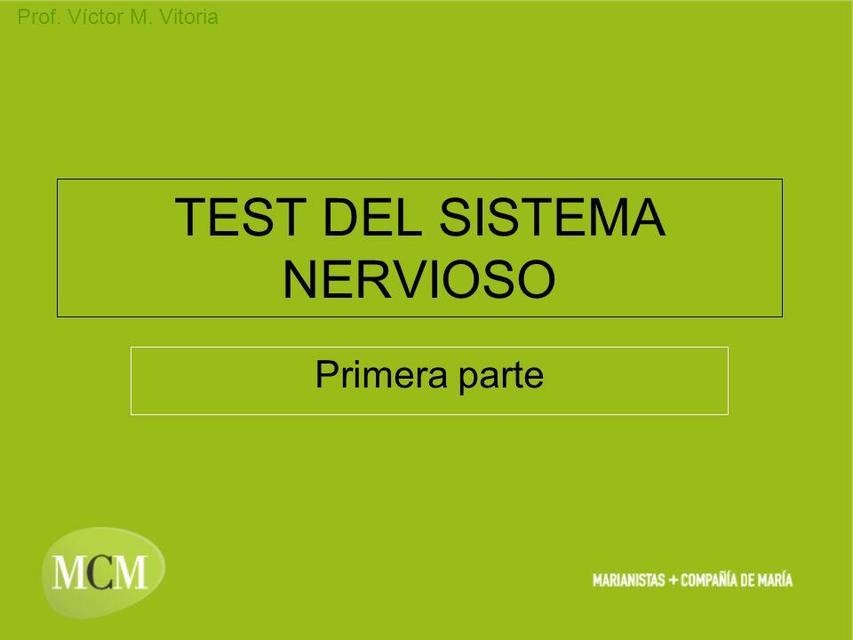 TEST DEL SISTEMA NERVIOSO