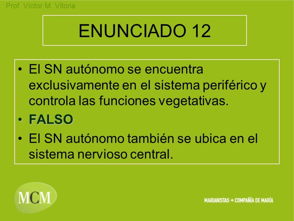 ENUNCIADO 12 El SN autónomo se encuentra exclusivamente en el sistema periférico y controla las funciones vegetativas.