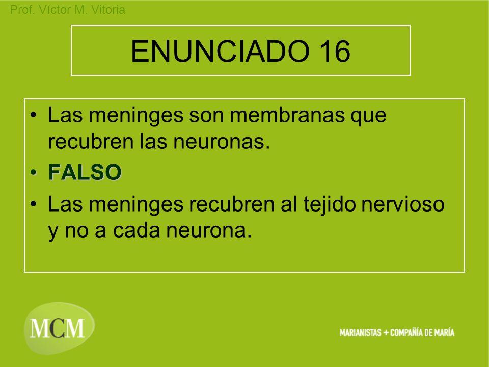 ENUNCIADO 16 Las meninges son membranas que recubren las neuronas.