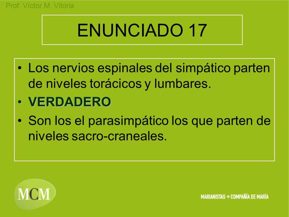 ENUNCIADO 17 Los nervios espinales del simpático parten de niveles torácicos y lumbares. VERDADERO.