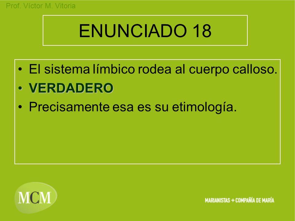 ENUNCIADO 18 El sistema límbico rodea al cuerpo calloso. VERDADERO