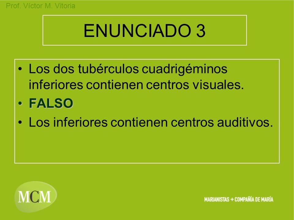ENUNCIADO 3 Los dos tubérculos cuadrigéminos inferiores contienen centros visuales.
