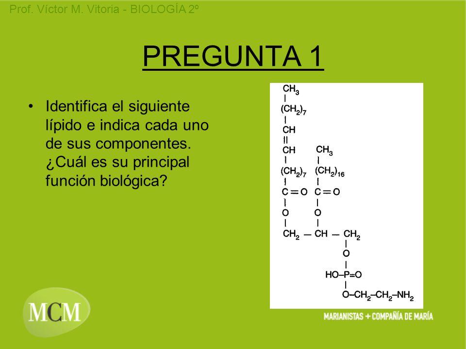 PREGUNTA 1Identifica el siguiente lípido e indica cada uno de sus componentes.