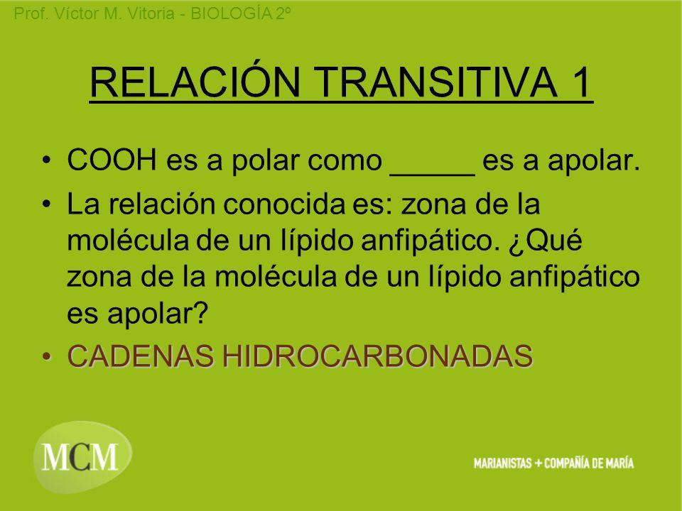 RELACIÓN TRANSITIVA 1 COOH es a polar como _____ es a apolar.