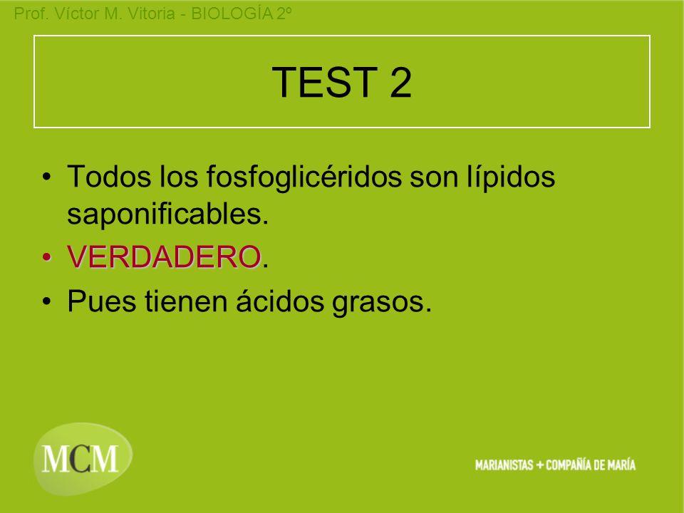TEST 2 Todos los fosfoglicéridos son lípidos saponificables.