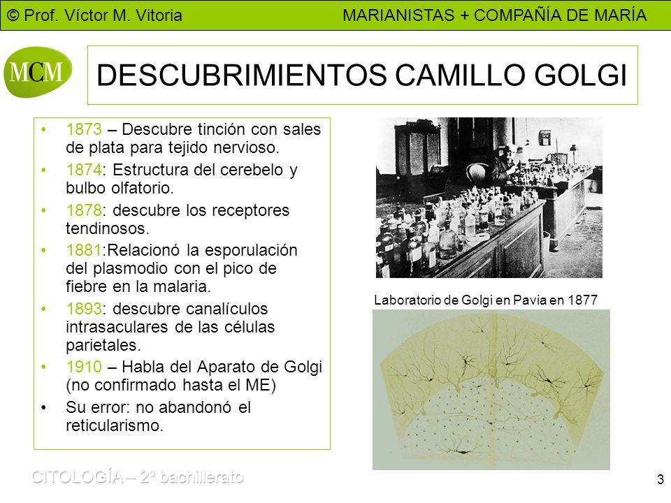 DESCUBRIMIENTOS CAMILLO GOLGI