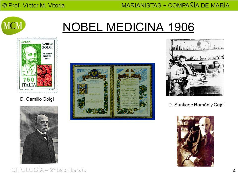 NOBEL MEDICINA 1906 D. Camillo Golgi D. Santiago Ramón y Cajal