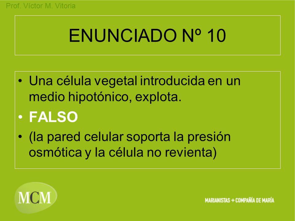 ENUNCIADO Nº 10Una célula vegetal introducida en un medio hipotónico, explota. FALSO.
