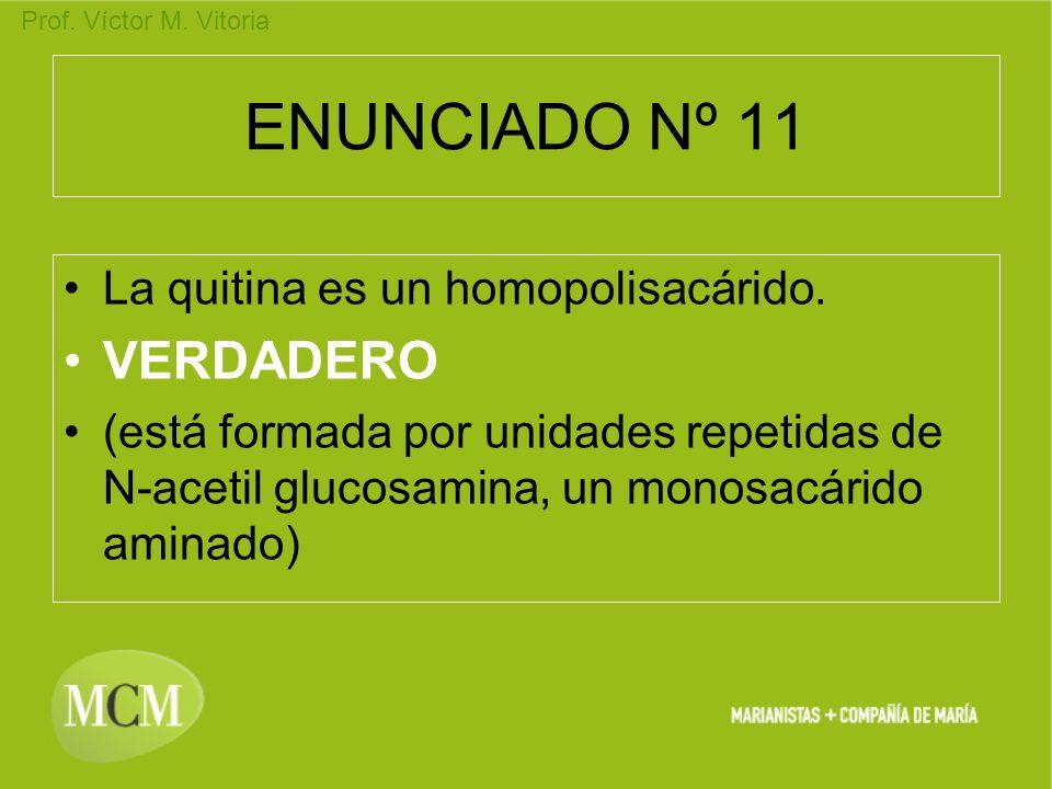 ENUNCIADO Nº 11 VERDADERO La quitina es un homopolisacárido.