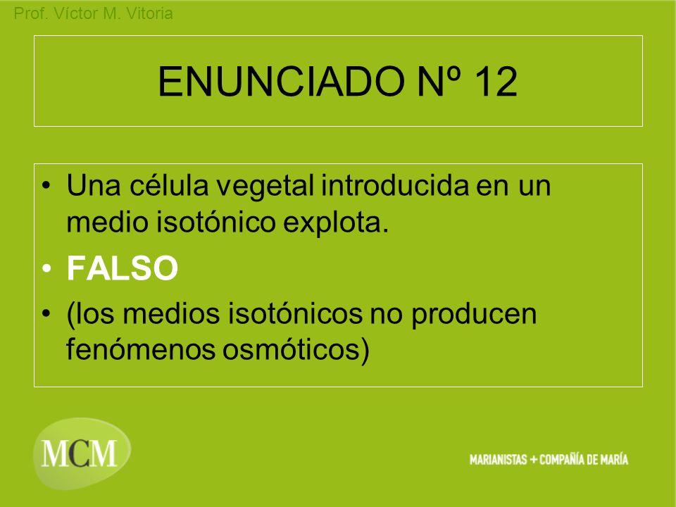 ENUNCIADO Nº 12 Una célula vegetal introducida en un medio isotónico explota.