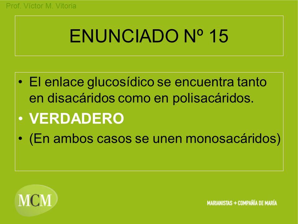 ENUNCIADO Nº 15 VERDADERO