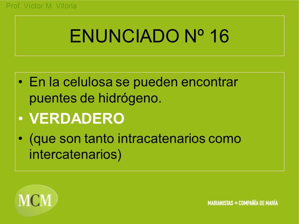 ENUNCIADO Nº 16 VERDADERO