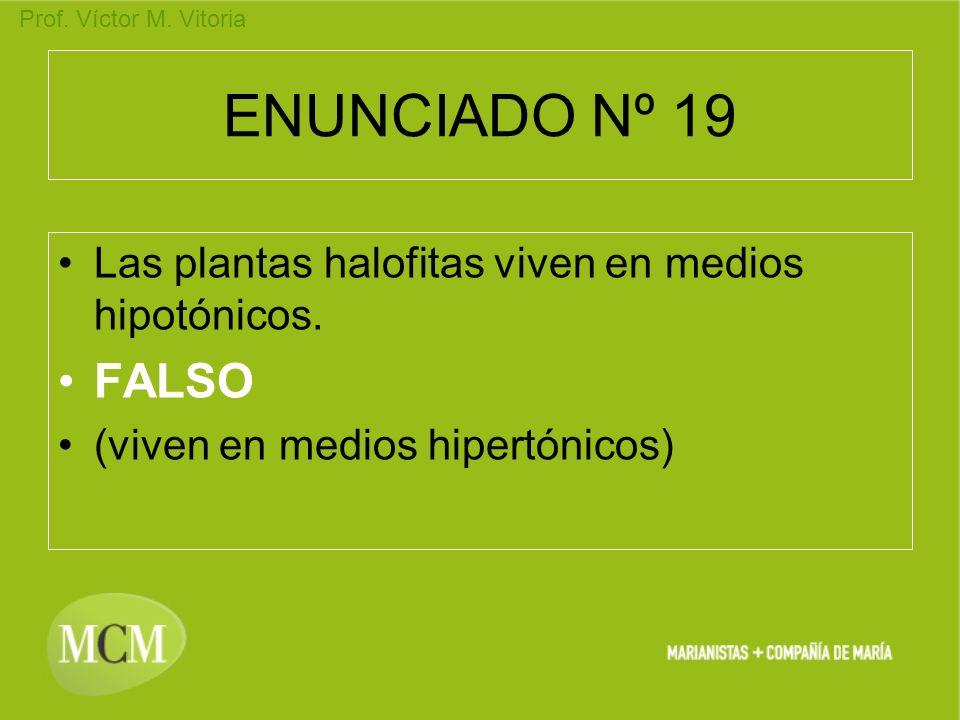 ENUNCIADO Nº 19 Las plantas halofitas viven en medios hipotónicos.
