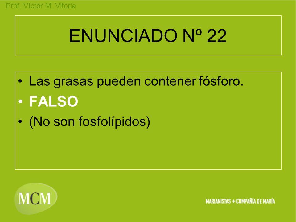 ENUNCIADO Nº 22 FALSO Las grasas pueden contener fósforo.